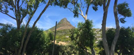 Suedafrika02_610breit