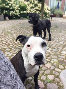 Werner und Hera